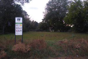 Die Fläche ist als Spielplatz ausgewiesen. Entstehen sollen hier Flächen zum Ballspielen. Foto: Philine Schlick